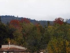 20131115-173016.jpg